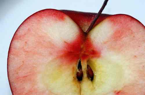 Apple_Seeds