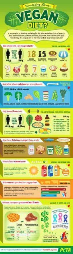 Vegan Health Infographic