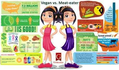 Vegan vs Meat Eater