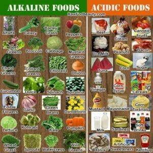 - The Benefits of an Alkaline Diet and Body