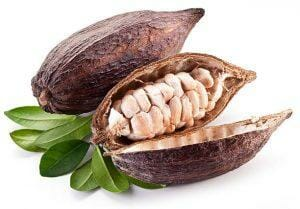 - Carob is an Brilliant replacement to Chocolate (Cocoa) without Caffeine