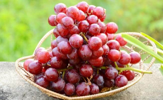 - 5 Food Replacements for an Healthier Alternative